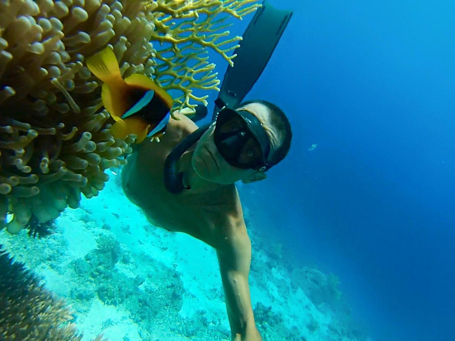 Foto apneista con corallo di fuoco e pesce pagliaccio